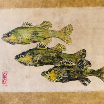 gyotakufish